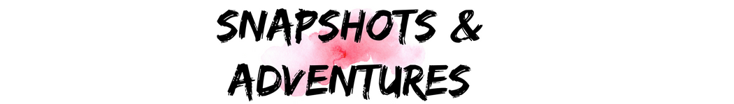 Snapshots and Adventures