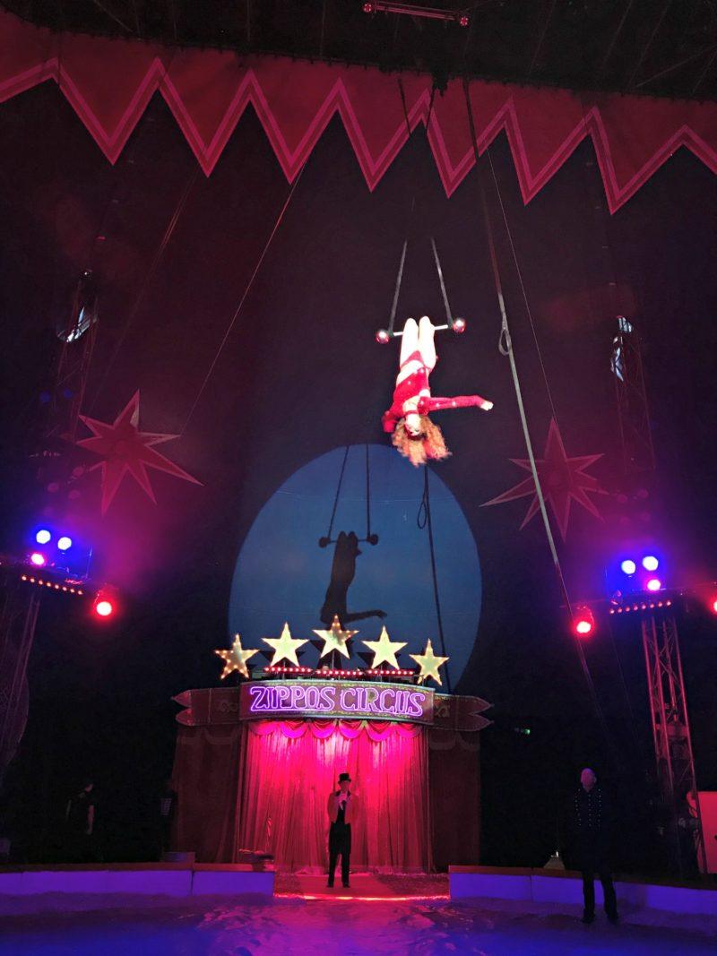trapeze artist zippos circus