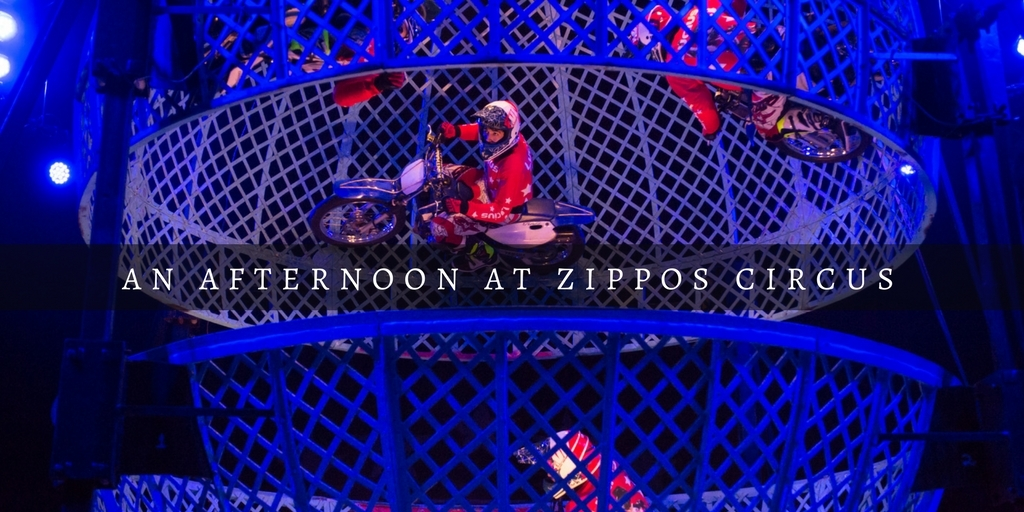 Zippos Circus Brighton Review