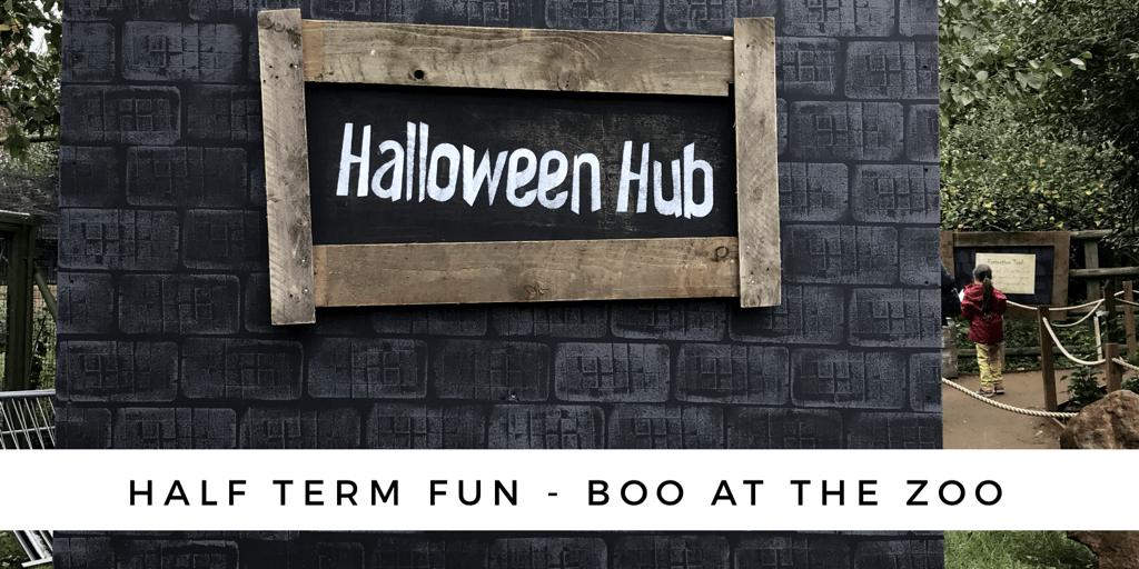 Half-term fun – Boo at the zoo